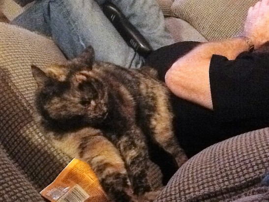 Sally Ann - her treats and her human
